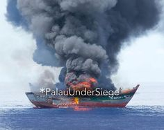 In the western Pacific ocean the small island nation of Palau is burning the ships of poachers who sail into its waters.  Palau is a prime target for poachers: The nation of only 21000 people and 250 islands oversees 230000 square miles of ocean - an area roughly the size of France. The country has only 18 patrol members and 1 ship at its disposal.  Shark-fin soup which can cost more than $100 a bowl has long been a dietary staple of Chinese elites. But with the Chinese middle class…