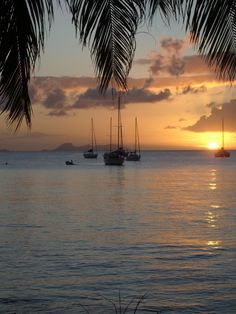 Coucher de soleil pris a Marie Galante -  Photos de vacances de Antilles Location #Guadeloupe Marie Galante, Beautiful Sunset, Beautiful Beaches, Islands In The Stream, Paradise Travel, Caribbean Art, Landscape Paintings, Landscapes, Belle Photo