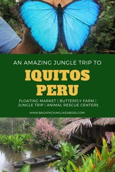 An amazing trip to Iquitos, Peru. The floating markets of Belen, Butterfly farms, Animal Rescue Centers and of course: A 3 day Jungle Trip!