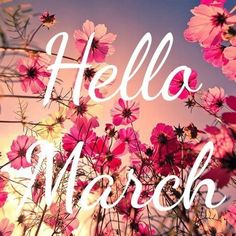 Hello March by The Effective Pictures We Offer You About Birthday Month beyonce A quality picture can tell you many things. Seasons Months, Days And Months, Seasons Of The Year, Months In A Year, Hello March Quotes, Hello January, Happy March, New Month Wishes, March Month