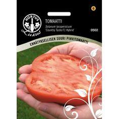 TOMAATTI 'Country Taste F1' Lajikkeen lihaiset, herkulliset ja erittäin suuret hedelmät voivat helposti painaa jopa 220 g, jos yhteen kasviin jätetään vain 3-4 hedelmää kasvamaan. Voidaan myös viljellä ulkona. Edelliskesän alennussiemenistä. Taimet hinteliä ja kasvoivat huonosti. En istuttanut kasvihuoneseen lainkaan.