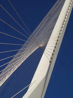 Join buildyful.com - the global place for architecture students.~~Jerusalem Chords Bridge by Santiago Calatrava