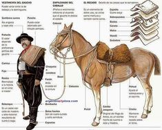 Traditional Dress Gauchos are nowadays considered as the symbol of Argentina and has an importante attitude in their traditional and warrior Guacho costume. Horse Saddles, Horse Tack, Horse Harness, Going Blind, Cowboy Girl, Akhal Teke, Figure Drawing Reference, Rio Grande Do Sul, Le Far West