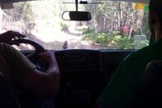 Ruta en 4x4 por la serranía http://misierradegata.com/project/ruta-en-4x4-por-la-serrania/
