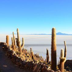 Paisajes increíbles en el Salar de Uyuni  VIS_bolivia