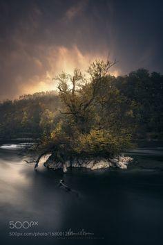 Light Burning over the Rhine