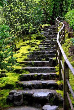 Mossy Stairway, Portland Japanese Garden. -2011