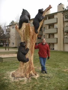 Amazing tree carvings and sculptures