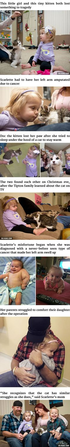 3-Legged Kitten And Amputee Girl Become The Cutest Best Friends - 9GAG