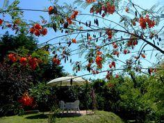 Jardim Quinta Outeiro da Luz