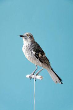 Esculturas de papel em forma de pássaros