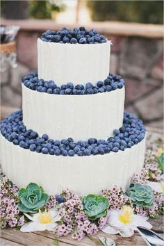 blueberry wedding cake with succulent border / http://www.deerpearlflowers.com/rustic-berry-wedding-cakes/