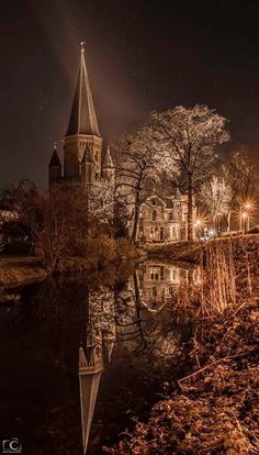 Bruges, Belgium, Netherlands, Holland, Cathedral, House Styles, Building, Travel, The Nederlands