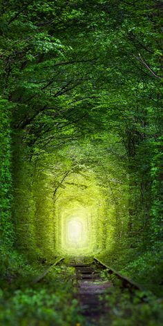 Real Tunnel of Love, Ukraine