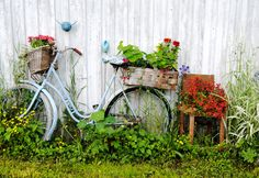 Bicycle Flower Pot......I may just paint my old pink white!