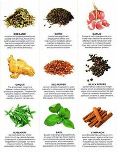 Herbs and their benefits - Smart Salad