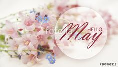 """Download the royalty-free photo """"Hello May wallpaper with pastel pink and blue flowers"""" created by stillforstyle at the lowest price on Fotolia.com. Browse our cheap image bank online to find the perfect stock photo for your marketing projects!"""