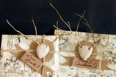Copy Cat Chic Mini Twig Antlers with burlap and jute twine