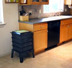 Gardening Compost Ever wondered where to keep your worm composting bin? Here's a quick guide! Composting At Home, Worm Composting, Vertical Garden Diy, Vertical Gardens, Garden Compost, Gardening, Garden Tips, Garden Ideas, Kitchen Redo