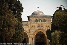 Masjid Al-Aqsa | المسجد الأقصى