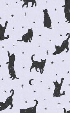 Want to conjure up a magical mood in your interiors? The pairing of lilac and black colours with the cat, moon and stars motif in our Salem wallpaper is a whimsical and on-trend way to update your space. Style with more starry sky decor in your bedroom for a mystical look that'll keep putting a smile on your face.This pattern is ideal for a teenager's bedroom, too, decorated with fairy lights and other pastel touches. Cat Pattern Wallpaper, Cat Wallpaper, Wallpaper Ideas, Pastel Purple, Purple And Black, Lilac, Witchy Wallpaper, Forest Wallpaper, Salem Cat