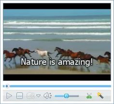 How to Add External SRT Subtitiles to Video