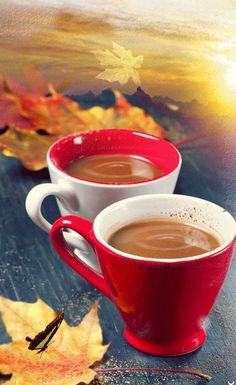 leave me some justin I Love Coffee, My Coffee, Coffee Mugs, Good Morning Coffee, Coffee Break, Coffee Cafe, Coffee Shop, Gif Café, Momento Cafe