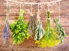 Save Your Summer Herbs Now! Air-drying is a simple, aromatic way to enjoy herbs year-round. Spices And Herbs, Fresh Herbs, Herb Garden, Garden Art, Garden Ideas, Korn, Natural Living, Plant Hanger, Good To Know