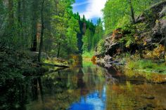 A beautiful image taken on the West Fork Trail in Sedona, Arizona.