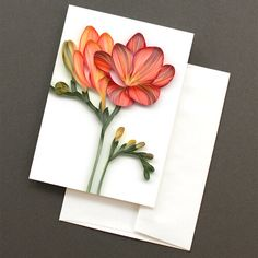 Blank greeting cards featuring on-edge paper art by JUDiTH+ROLFE, printed on recycled paper, with matching recycled envelopes. Quilling Techniques, Quilling Patterns, Paper Quilling, Creative Crafts, White Envelopes, Diy Cards, Three Dimensional, Bespoke, Flowers