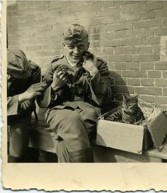 German soldiers posing with cat and kittens