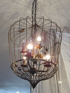 Birdcage Chandelier I Love The Addition Of Free Bird On Outside