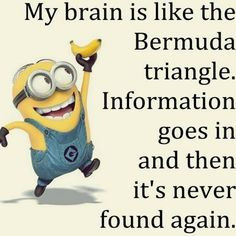 My Brain funny quotes minion minions funny pictures funny photos funny images minion quotes funny minions Cute Minions, Funny Minion Memes, Minions Quotes, Minion Sayings, Minion Stuff, Minion Humor, Funny Jokes, Funny Photos, Funny Images