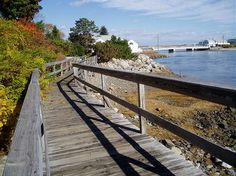 The Marginal Way, a scenic seacoast walk.  It truly depicts the rugged coastline associated with the Maine coastline.