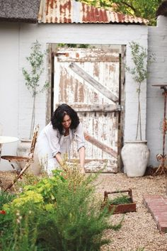 rustic backyard #green