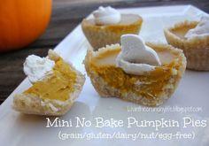 Mini No Bake Pumpkin Pies