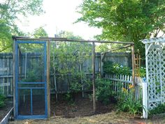 Custom Berry Enclosure This Project Combines Function