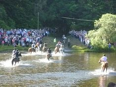 Border Reivers - Skills of horsemanship are kept alive in the Borders: fording the Tweed on Braw Lad's Day, Galashiels 2011 Keep Alive, World Religions, Scotland Travel, Where The Heart Is, Northern Ireland, Festivals, Places Ive Been, Tweed, Roots