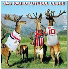 PríncipeTito Blog: O CAMPEÃO VOLTOU...S.PAULO 1 x 2 JUVENTUDE (Série ...