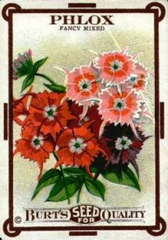 Creative Country Moms Garden: Vintage Seed Packets