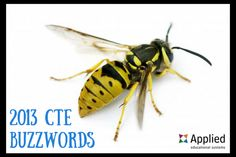 2013 CTE Buzzwords - Do you know these words from the archives of CTE?