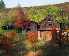 Carvers Apple Orchard, Cosby, Tennessee