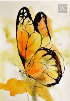 I LOVE this butterfly watercolor art ! painting I LOVE this butterfly watercolor art ! It's so easy for beginners . Butterfly Painting, Butterfly Watercolor, Watercolor Animals, Easy Watercolor, Watercolor Pencils, Tattoo Watercolor, Watercolor Water, Butterfly Drawing, Drawings Of Butterflies