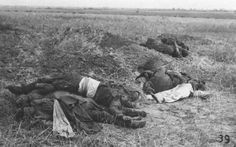 Red Army soldiers who died in Mogilev in a battle with the German 10th Motorized Infantry Division, 1941. The human form almost disappears once a man is dead in battle.
