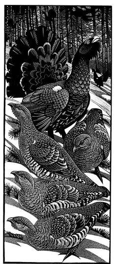 Colin See-Paynton - Wood Engraving
