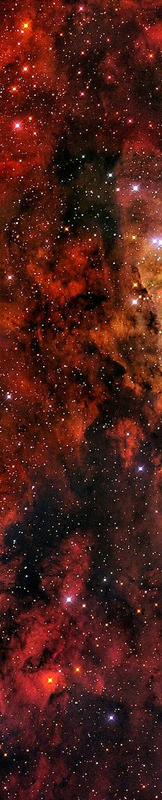TheCarina Nebula(catalogued asNGC 3372; also known as theGrand Nebula,Great Nebula in Carina, orEta Carinae Nebula) is a large, complex area ofbrightanddark nebulosityin the constellationCarina, and is located in theCarina–Sagittarius Arm. The nebula lies at an estimated distance between 6,500 and 10,000light-years(2,000 and 3,100pc) fromEarth