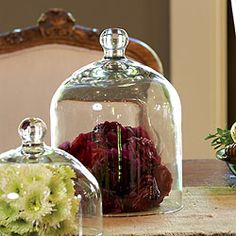 Viva la Glam! with petite and tall handblown glass domes. http://store.willowhouse.com/search.aspx?keyword=dome