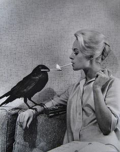 """I'm a huge fan of Tippi Hedren (top left and bottom,) Alfred Hitchcock and Sienna Miller (top right.) I have to say, I am looking forward to seeing The Girl, about Alfred & Tippi, his """"discovery"""" of. Vintage Photography, White Photography, Classic Photography, Potnia Theron, Tippi Hedren, Philippe Halsman, I Love Cinema, Foto Art, Belle Photo"""