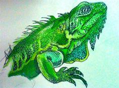 Iguana Watercolor