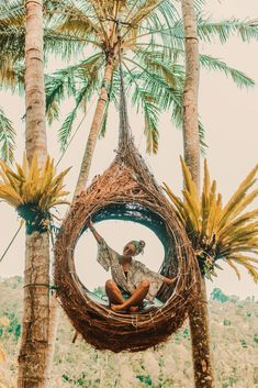 I have the palm tress, now I just need the swing